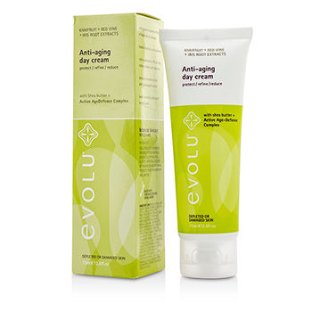 Anti-Aging-Day-Cream-(Depleted-or-Damaged-Skin)-Evolu